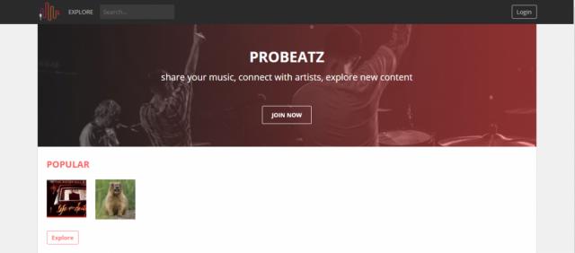 ProBeatz - izrada web stranica | Zagorski oglasnik